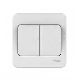2W Switch Plate Wider Rocker